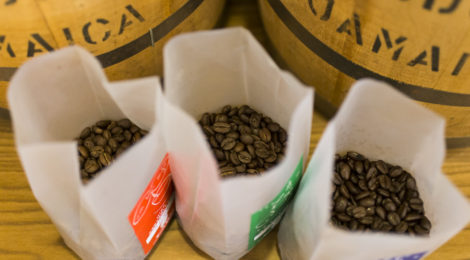 2019,5,26コーヒー豆、週間人気ランキング!