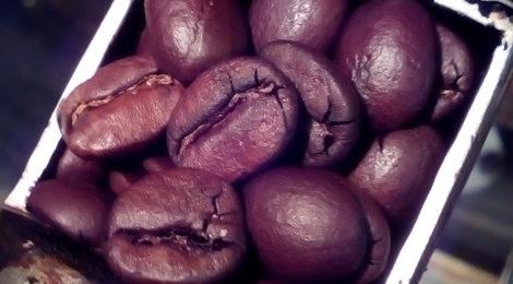 ミャンマー7 「コーヒーの楽しみは多様性!」−6最終回