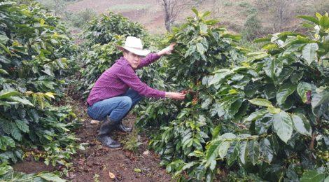 コーヒー豆20%増量セール!